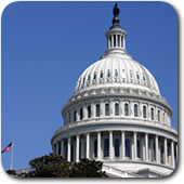 The Voice of AACAP - Advocacy and Policy